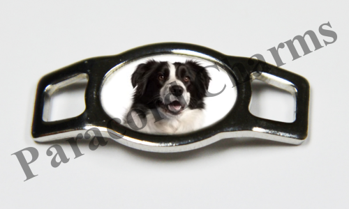 Border Collie - Design #002