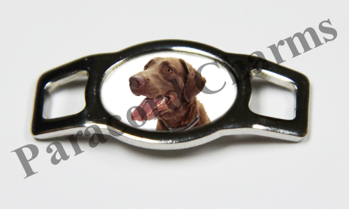 Chesapeake Bay Retriever - Design #002