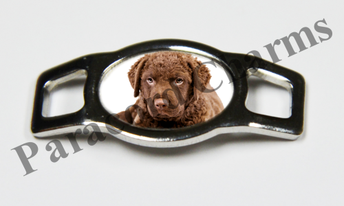 Chesapeake Bay Retriever - Design #005