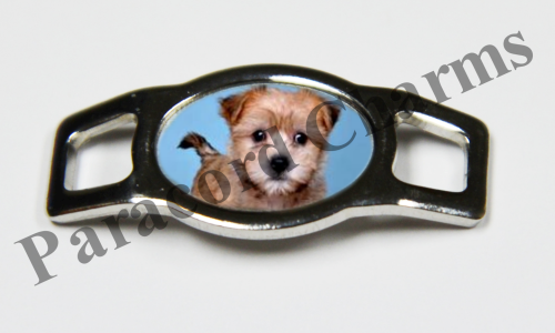 Norfolk Terrier - Design #002