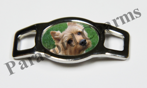 Norwich Terrier - Design #005