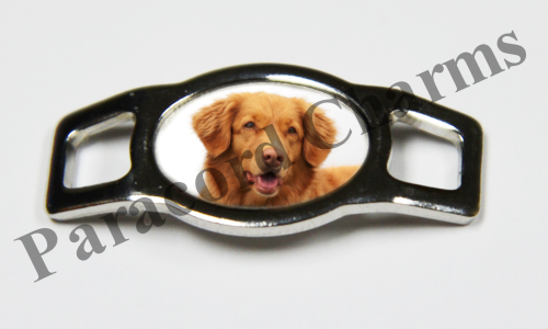 Nova Scotia Duck Retriever - Design #001