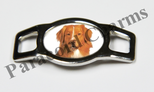Nova Scotia Duck Retriever - Design #004
