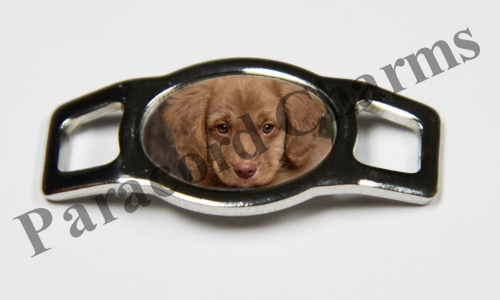 Nova Scotia Duck Retriever - Design #007