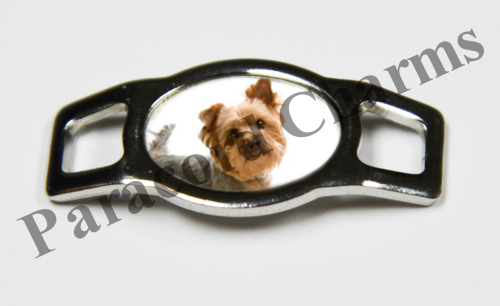 Silky Terrier - Design #005