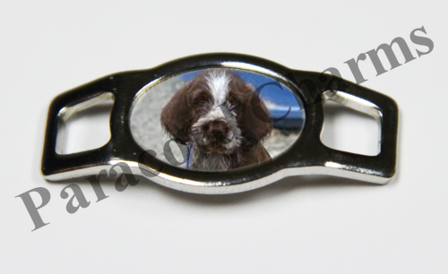 Spinone Italiano - Design #002