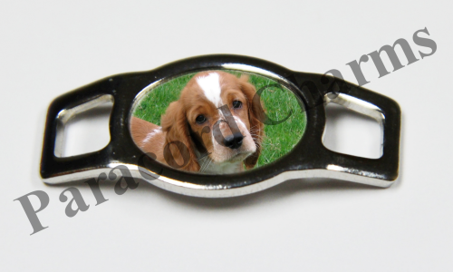 Welsh Springer Spaniel - Design #004
