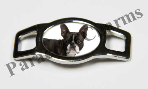 Boston Terrier - Design #004