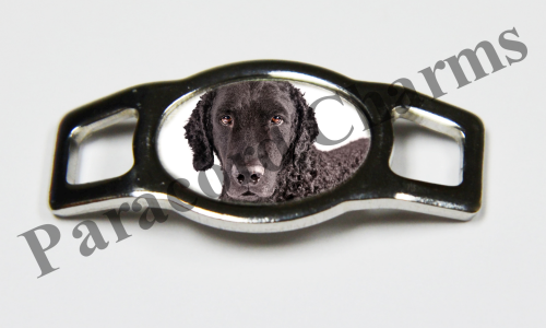 Curly-Coated Retriever - Design #002
