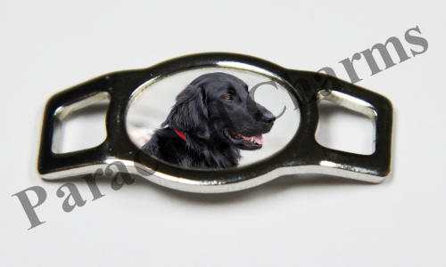 Flat-Coated Retriever - Design #001