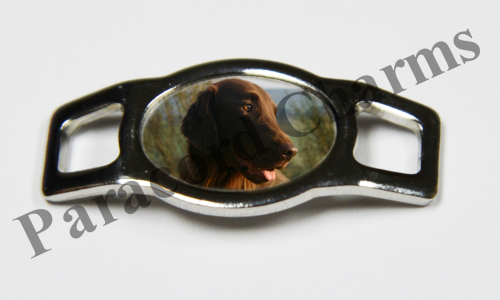 Flat-Coated Retriever - Design #002