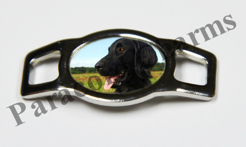 Flat-Coated Retriever - Design #003