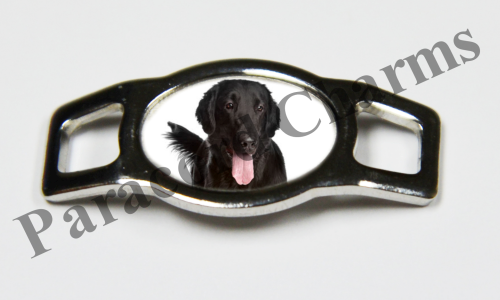 Flat-Coated Retriever - Design #004