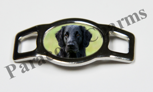 Flat-Coated Retriever - Design #005