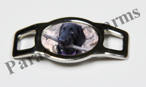 Flat-Coated Retriever - Design #006
