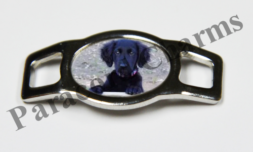 Flat-Coated Retriever - Design #007