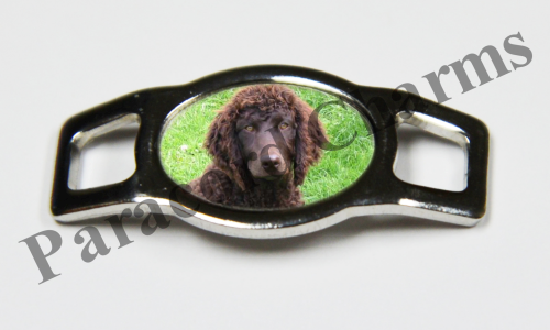 Irish Water Spaniel - Design #003