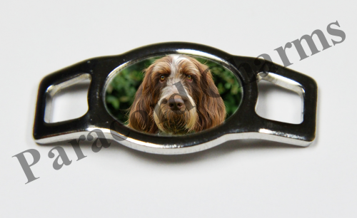 Spinone Italiano - Design #001