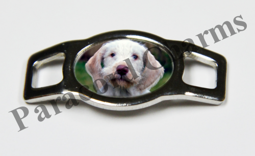 Spinone Italiano - Design #005