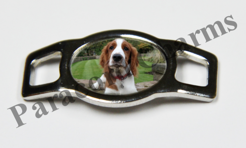 Welsh Springer Spaniel - Design #001