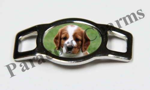 Welsh Springer Spaniel - Design #002